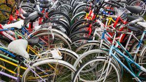 Cyklar som övergivits av asylsökande vid gränsen mellan Norge och Ryssland