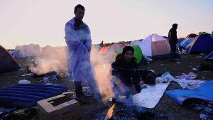 Flykting i Ungern