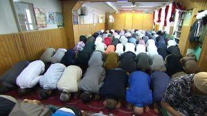 Det är ofta trångt i moskéer i Finland