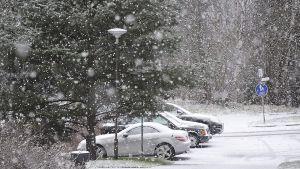 Snöoväder.