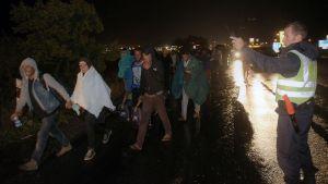 Migranter på väg till Österrike