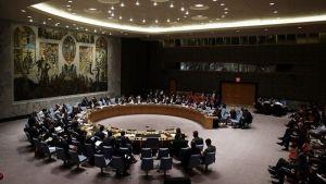 FN:s säkerhetsråd dryftar konflikten i Östra Ukraina
