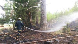 Pellinge FBK släcker markbrand på Byön, Lovisa.