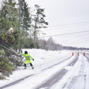 Röjning av stormskador över ellinjer på Åland