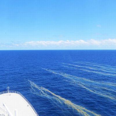 Trichodesmium-sinilevää meressä Ison valliriutan alueella.