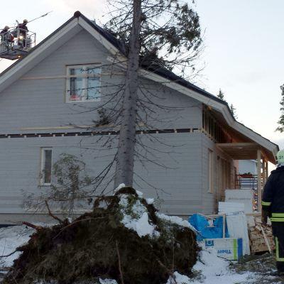 Puu on kaatunut talon päälle Kuopion Pirtin kaupunginosassa