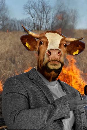 lehmän pää ihmisen ruumiissa