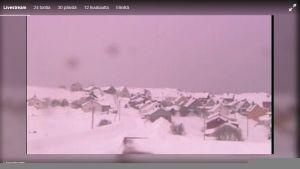 Skärmdump från webbkamera av Berlevåg.