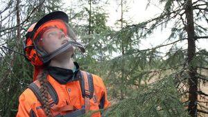 Porträtt på skogsarbetaren Satu Saarelainen med skyddsutrustning i skogen