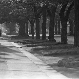 Hanko 1960-luvulla.
