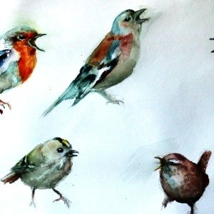 Erilajisia lintuja Minna Pyykön maalaus