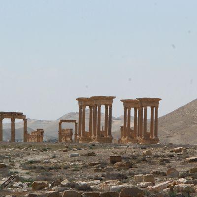 Muinaisia pylväitä Palmyran kaupungissa kuvattuna 27. maaliskuuta 2016.