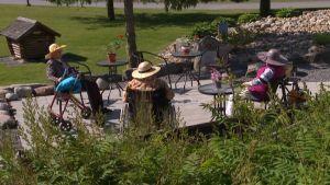 Äldre damer i hatt sitter i trädgård.