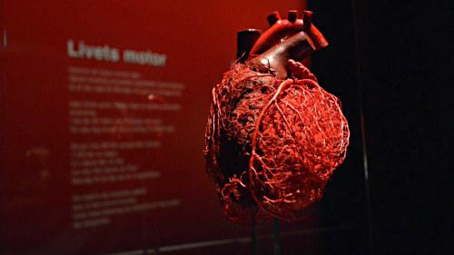 hjärtat slår hårt utan ansträngning