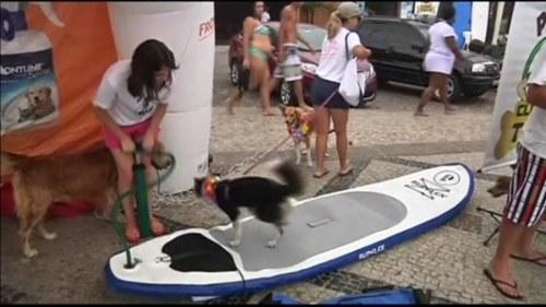 Surfare hittad efter 30 timmar pa bradan