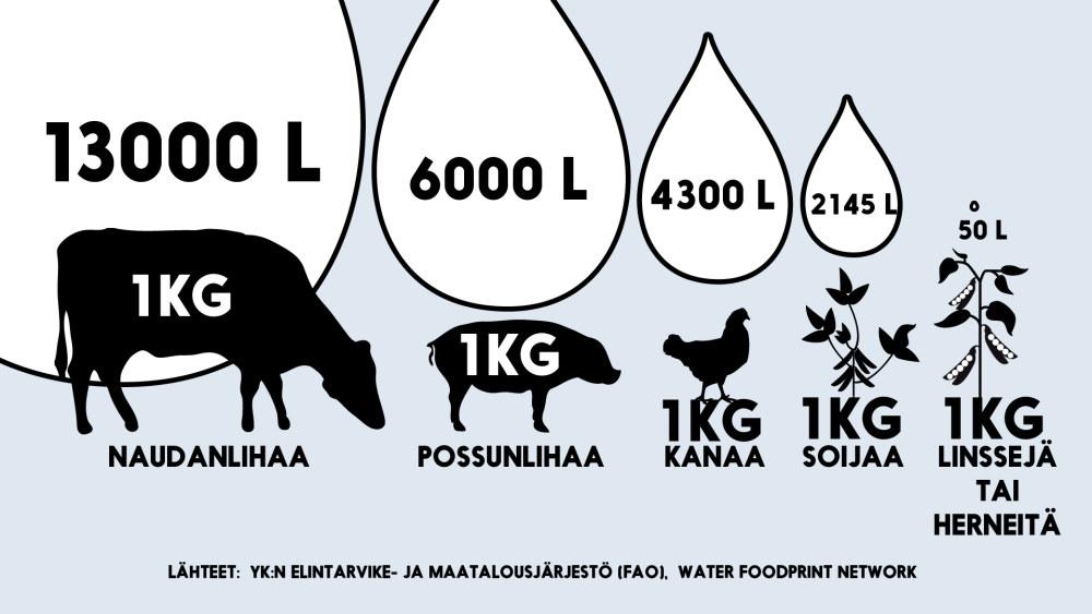 Infografiikka vedenkulutuksesta, jota kilon tuottaminen naudanlihaa, possunlihaa, kanaa, soijaa, linssejä tai herneitä vaatii.
