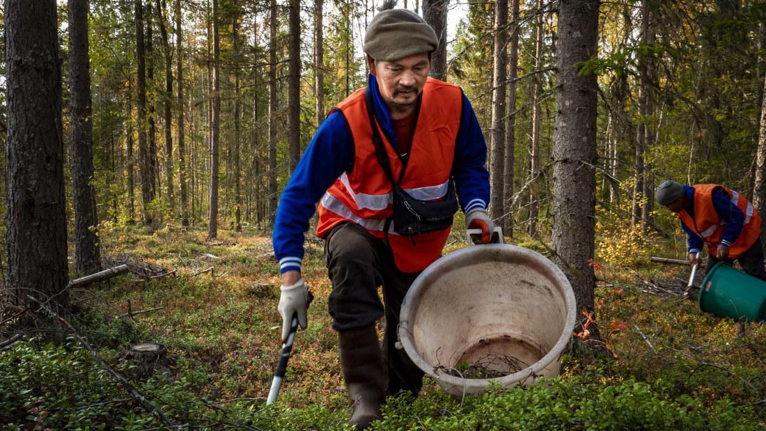 Minimilön Finland