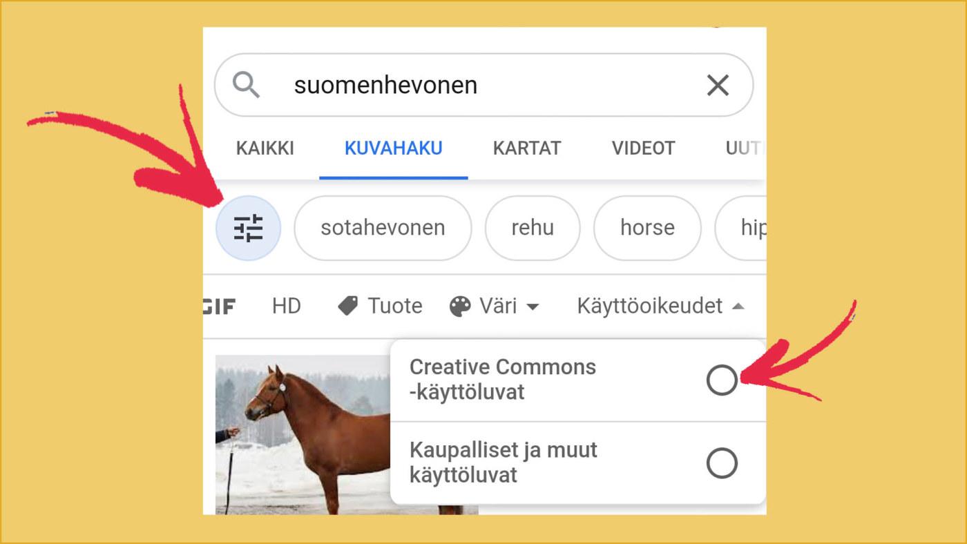 Google Kuvien Käyttöoikeus