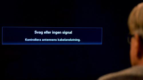 Olagligt att krava svenskt kott