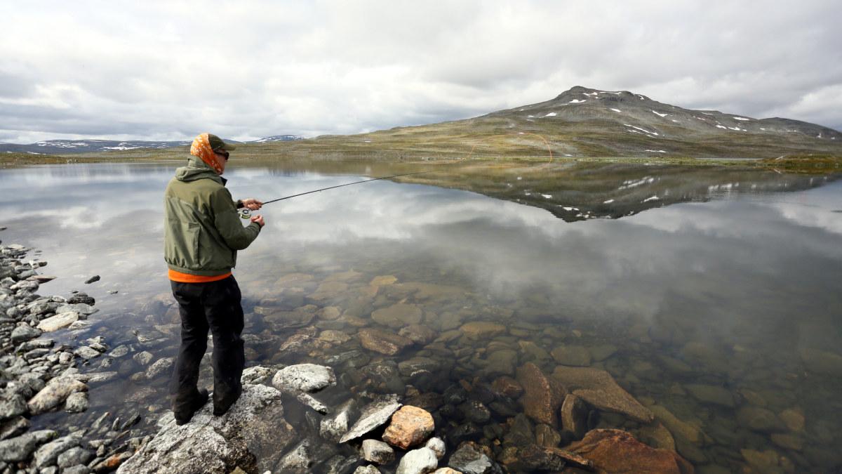 Pallasjärvi Kalastus