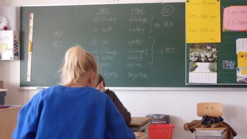 Mer pengar till svenskundervisning