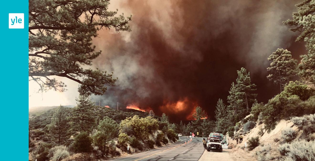 Karta Over Skogsbrander I Sverige.Skogsbrander Harjar I Kalifornien De Ar Som En Eldtornado