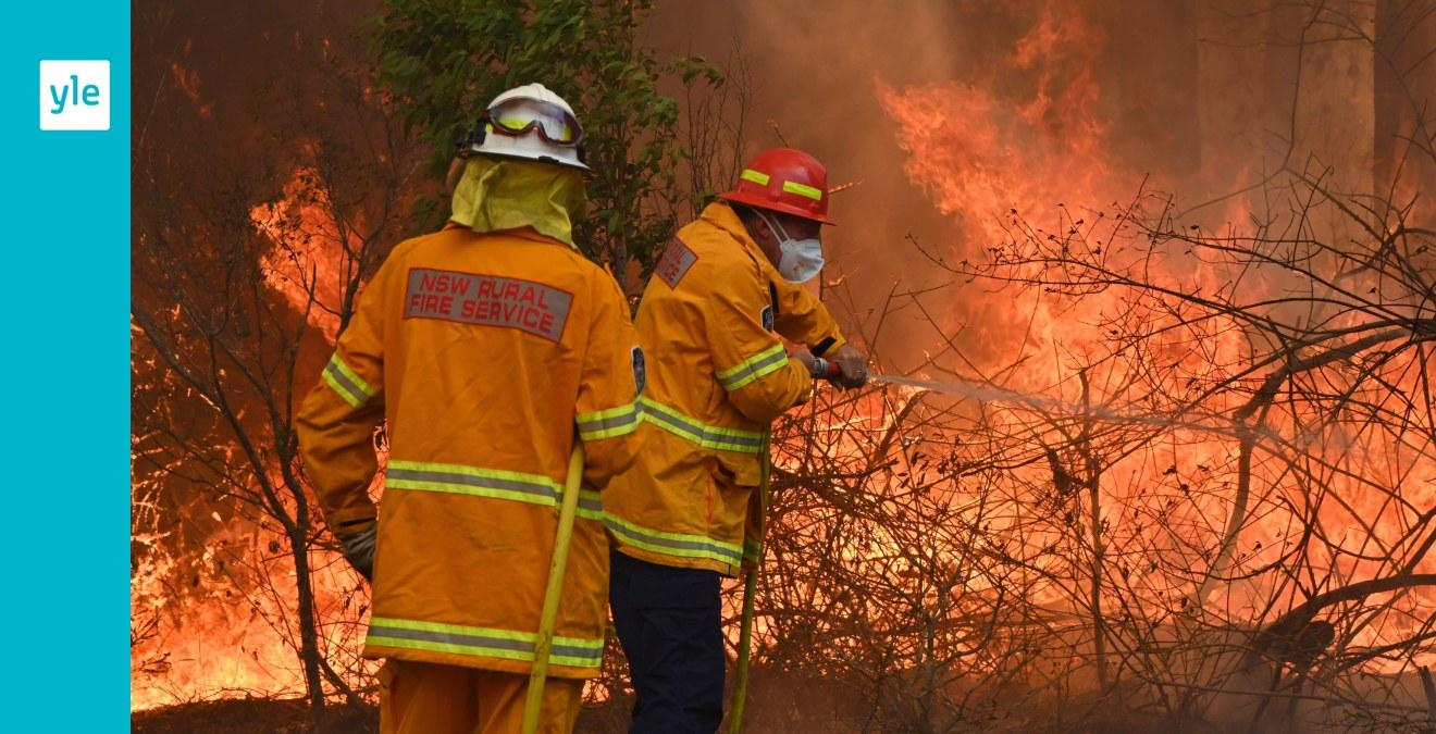 Bränderna i östra Australien kan förvärras – hotar för första gången landets största stad Sydney
