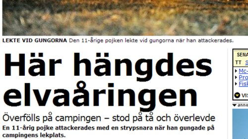 14 arig svenska overfolls i usa