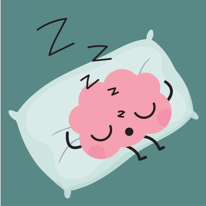aivohahmo nukkuu