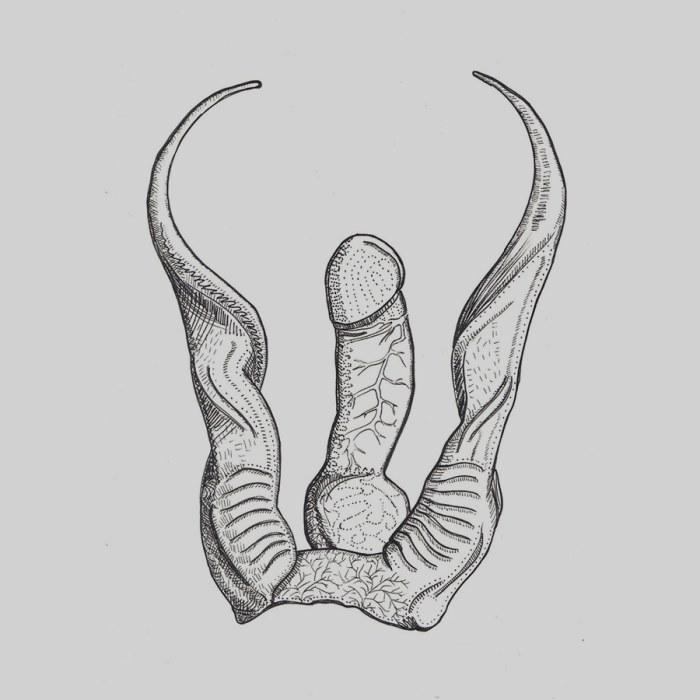 sex och erotik svens porr