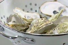Tvätta ostronskalen...
