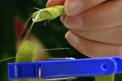 Vira tyget runt plastdiademet och limma fast