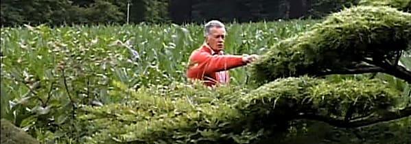 Erik Borja i sin trädgård