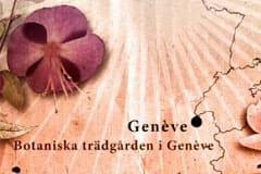 Den botaniska trädgården i Genève