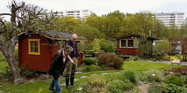 Thomas Brunells paradis i Vallgård, Helsingfors