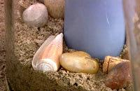 Sand och dekorationer i bottnen