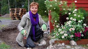 Susanna väljer stenar