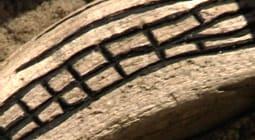 Mönsterristningar på strandfynd, detalj