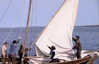 Den hundraåriga fälbåten