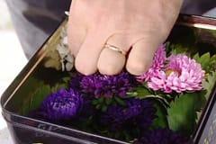 Stick i blommor och de annat material