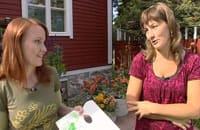 Lee och Catharina planerar sina målningar
