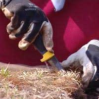 Vegetationsmattan går att skära i lämpliga bitar
