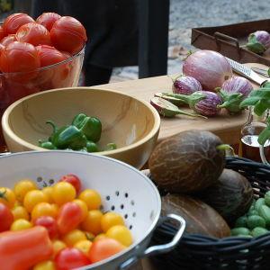 Olika grönsaker framlagda inför tillredning av pastasås.