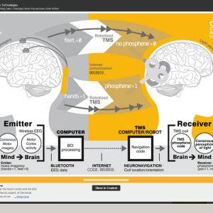 hjärnforskning