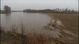 Översvämning vid Båskas i Korsholm