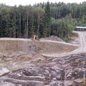 Ett företag har fällt alla träd i en sänka i Bengtsmora och där finns nu inga träd alls.