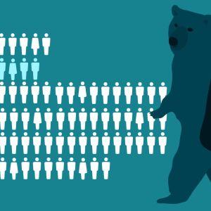 Skattebjörn