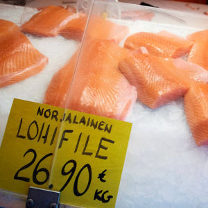 Norsk laxfilé