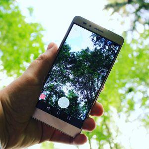 Puhelin ottamassa kuvaa metsämaisemasta