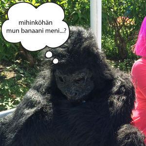 Kuplakuva - Gorilla ja Nettimimmi
